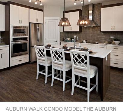 AuburnWalk-SuiteRendering1
